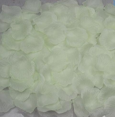 Лепестки роз белые