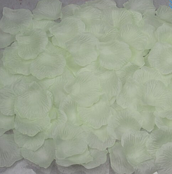 Білі пелюстки троянд