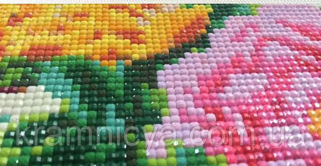 Алмазний живопис Rainbow Art