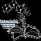 Искусственные цветы, головки, муляжи фруктов и овощей, декор - kvitu-opt.com.ua