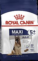 Royal Canin Maxi Adult 5+ (Роял Канин Макси Эдалт 5+) - сухой корм для собак крупных пород старше 5 лет 15 кг