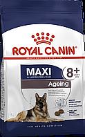 Royal Canin Maxi Ageing 8+ (РоялКанинМаксиЭйджен8) - сухой корм для собак крупных пород старше 8 лет 15 кг