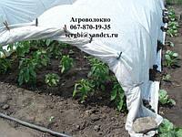 Агроволокно Агротекс 30 г/м² (1,6м*10м) пакетированное