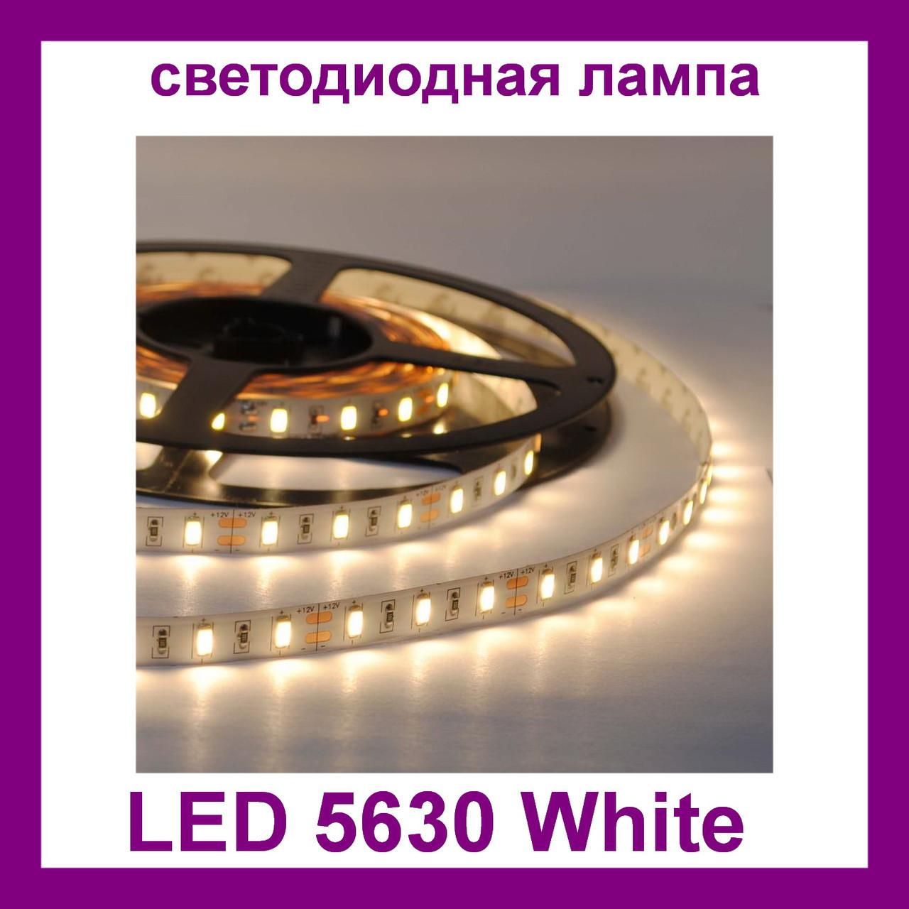 Светодиодная лента LED 5630 White PR3
