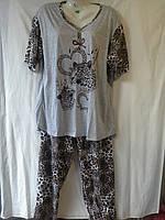 Пижамы женские БАТАЛЫ