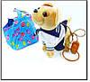 Собачка на повідку в сумочці