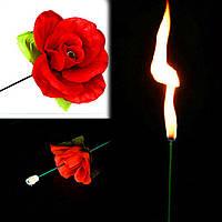 Факел превращающийся в розу