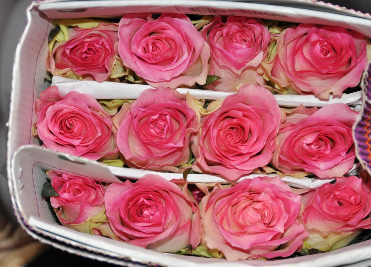 Букеты, живые цветы оптом доставка цветов в подарок в минске