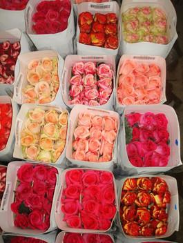 Свіжі квіти оптом