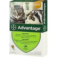 ADVANTAGE АДВАНТЕЙДЖ капли на холку от блох для кошек и декоративных кроликов весом менее 4 кг