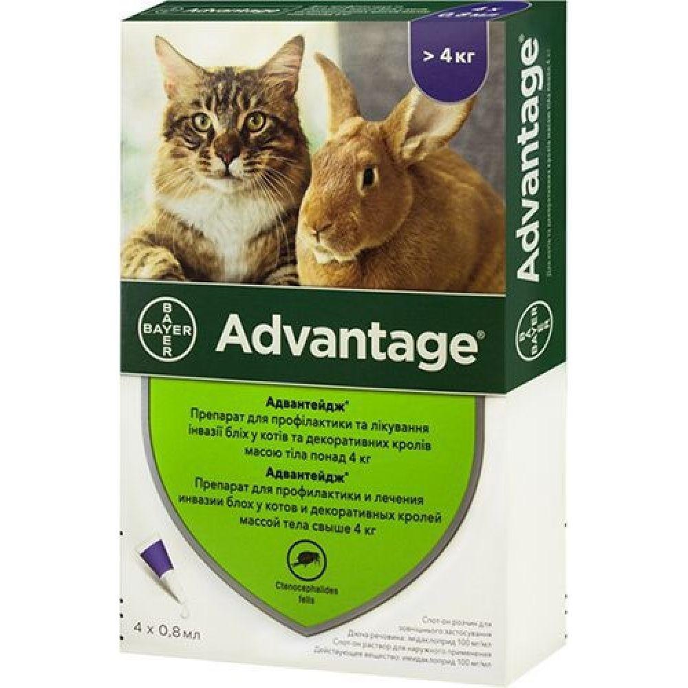 ADVANTAGE АДВАНТЕЙДЖ капли на холку от блох для кошек и декоративных кроликов весом свыше 4 кг.