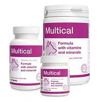 DOLFOS ДОЛФОС MULTICAL  МУЛЬТИКАЛ  витаминно-минеральный комплекс для взрослых собак , 90 таблеток