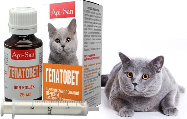 ГЕПАТОВЕТ суспензія для лікування печінки у кішок, 25 мл
