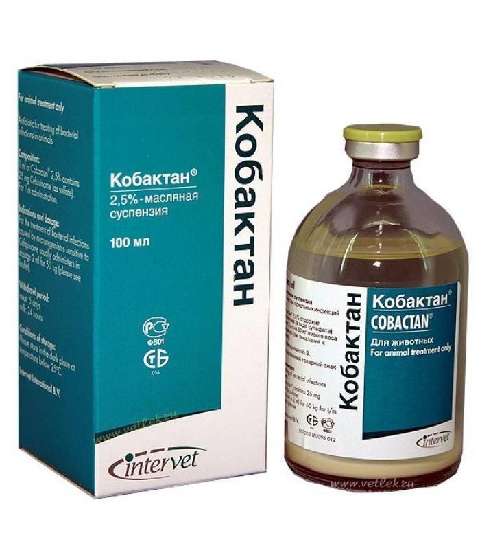 КОБАКТАН - ін'єкційний антибіотик, 100 мл