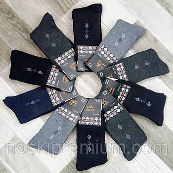 Шкарпетки чоловічі термо махрові бавовна Xijiafu, розмір 41-47, асорті, А02