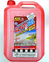 Антифриз (5л) BLITZ LINE красный концентрат G12(-80) Bio Land Poland