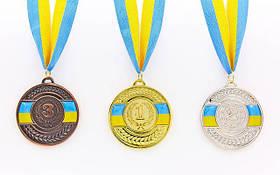 Грамоты, медали и дипломы