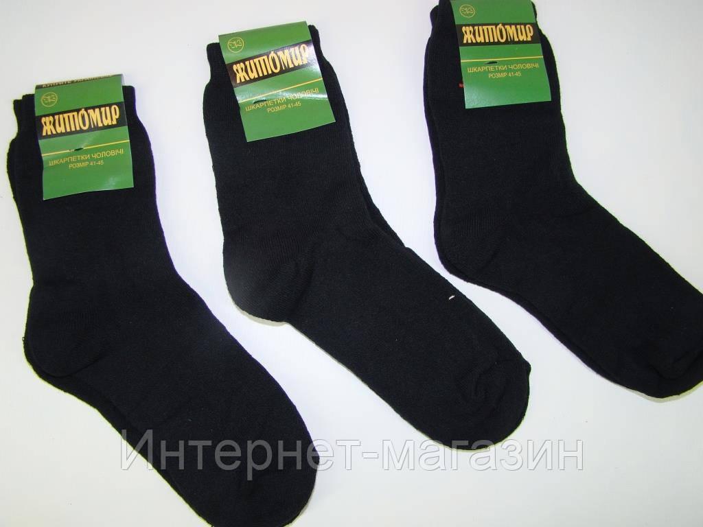 Мужские махровые носки Житомир-2 (41-45р) код 13116