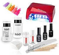 """Стартовый набор гель-лаков Kodi """"премиум"""" (с LED-CCFL лампой 36 Вт)"""