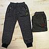 Спортивные брюки для мальчиков Seagull 134-164 p.p.