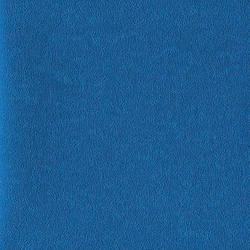 Siser 3D Techno TE0013 Blue