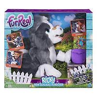 Интерактивный щенок Рикки FurReal от Hasbro. Научите его трюкам!, фото 1