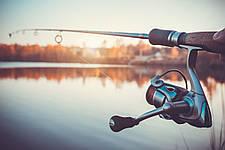 Последние тенденции в мире рыболовных катушек для удилищ и спиннингов