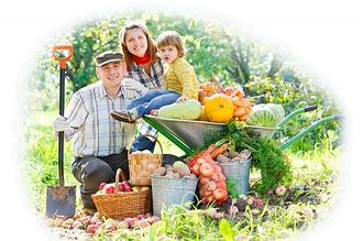 Средства защиты от домашних вредителей, сада и огорода