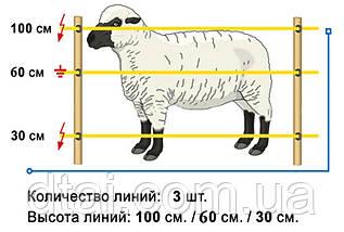 Электропастух для овец. Комплект для установки