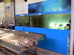 Торговые аквариумы. Общие сведения. Виды. Требования. Конструкция.
