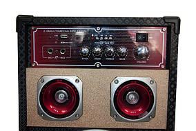 Акустическая система USBFM-198D-DT, фото 2