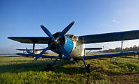 Услуги малой авиации. Десикация подсолнечника