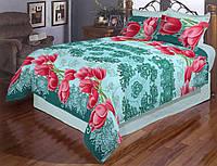 Двоспальний постільний комплект - Тюльпани на бірюзовому