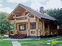 Будинок із зрубу проект DZ-B_02 (Дом из сруба)