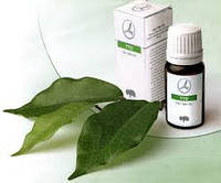 Масло чайного дерева - TTO Tea Tree Oil