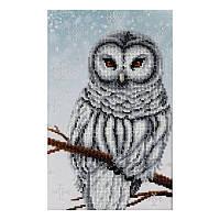 Схема для вышивки бисером Снежная сова