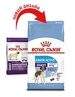 Сухой корм Роял Канин Royal Canin GIANT JUNIOR ACTIVE для активных щенков гигантских пород 15 кг