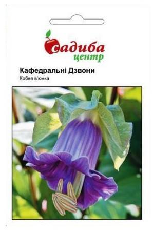 Семена кобеи Кафедральные колокола 0,3 г, Hем Zaden