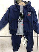 Детский спортивный костюм тройка для мальчиков оптом FD kids,разм  3-8