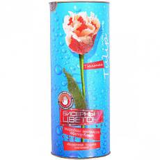 Набор бисера «Цветок         ДТ-ОО-09-39, фото 2