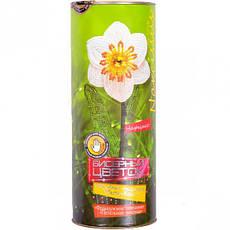 Набор бисера «Цветок         ДТ-ОО-09-39, фото 3