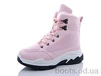"""Ботинки """"Girnaive"""" № 313 pink (зима) (р. 36-41). Оптом."""