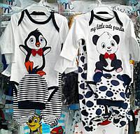 Костюмы для малышей Пингвин, Пандочка, 3 предмета (боди, ползунки, шапочка). 3, 6 месяцев.