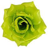 Роза магия, 11см  ( по 30 шт. в уп.), фото 2