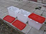 Бак для напування курей бройлерів перепелів кроликів для ніпельних поїлок. Ємність для ніпельного напування, фото 4