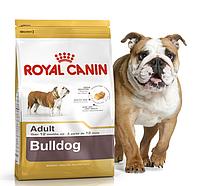 Royal Canin Bulldog Junior 3 кг для щенков английского бульдога