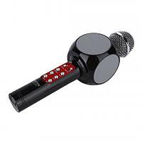 Микрофон Караоке DM 1816 c чехлом