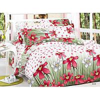 Двуспальное постельное белье Бязь Gold - Розовая поляна 5a95f58111d17