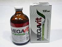 Мегавит инъекционный, 100 мл