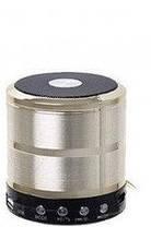 Портативная колонка с радио и Bluetooth WS-887 Mini Speaker, фото 2